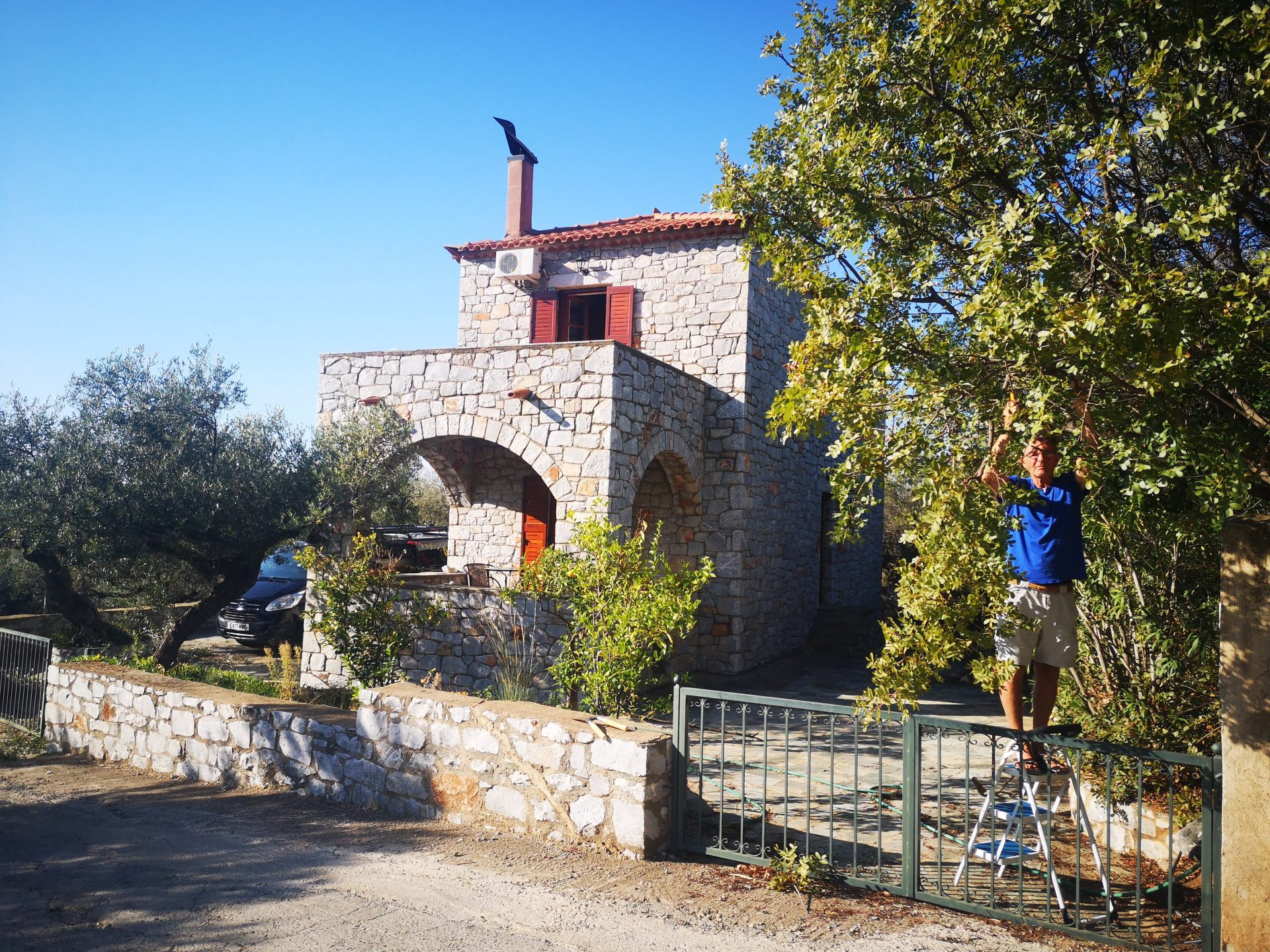 Armand pruning Olive Trees The Mani